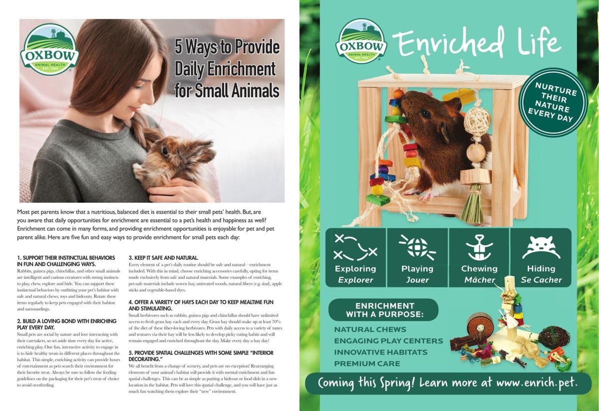 Small Animal Enrichment