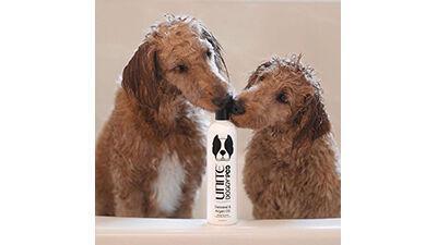 UNITE Dog Shampoo