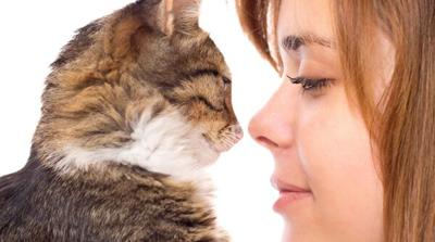 How Much Time Do Owners Spend with Their Cats?