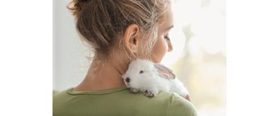还有其他的兔子和其他的灵魂