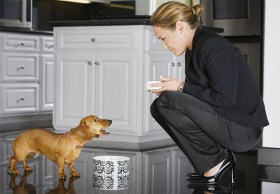 Confirming the Sources of Made in the USA Pet Food