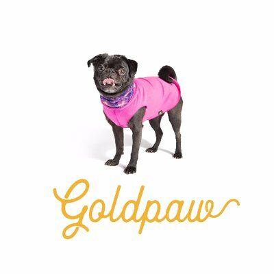 Gold Paw Series Relocates to Midwest