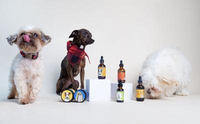 cbd dog health products