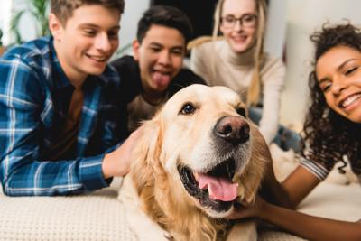 How Gen Z and Millennial Pet Owners Differ in Shopping for Their Pets