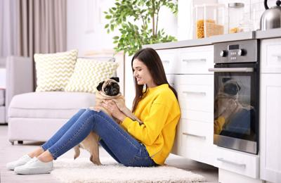 Pet Dishes Are Following Home Décor Trends