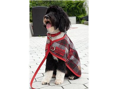 Cherry Red Plaid Coat