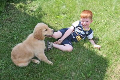 Study Shows Young Children with Pet Dogs Fare Better than Those Without