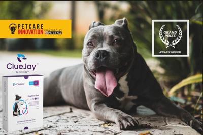 Purina Pet Care Innovation Prize, ClueJay