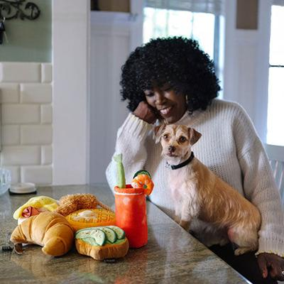 The Product Features to Consider When Stocking Pet Toys