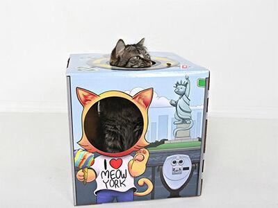 Meow York Box