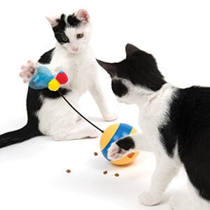 Toys that Play Well