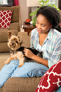 Swift, Safe and Systematic Pest Control for Pets