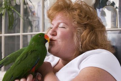 birddayshutterstock.jpg