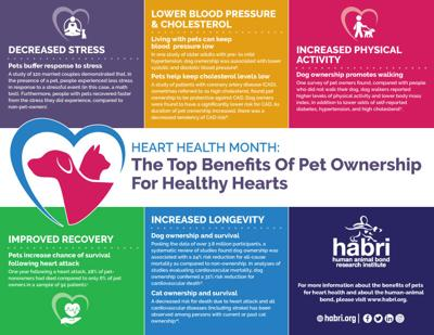 HABRI, infographic healthy hearts