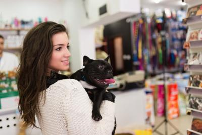 Survey Examines How Millennials Shop For Their Pets