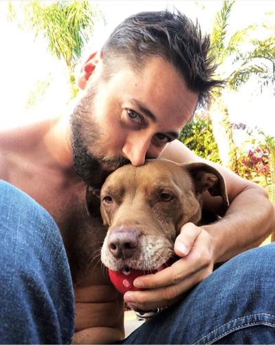 """Ryan Eggold to Host """"Clear the Shelters"""" Show on NBC"""