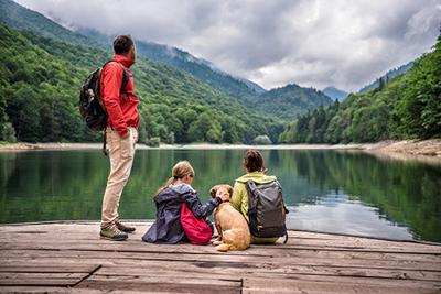 Pet Travel Accessories Make Trips Safe, Convenient