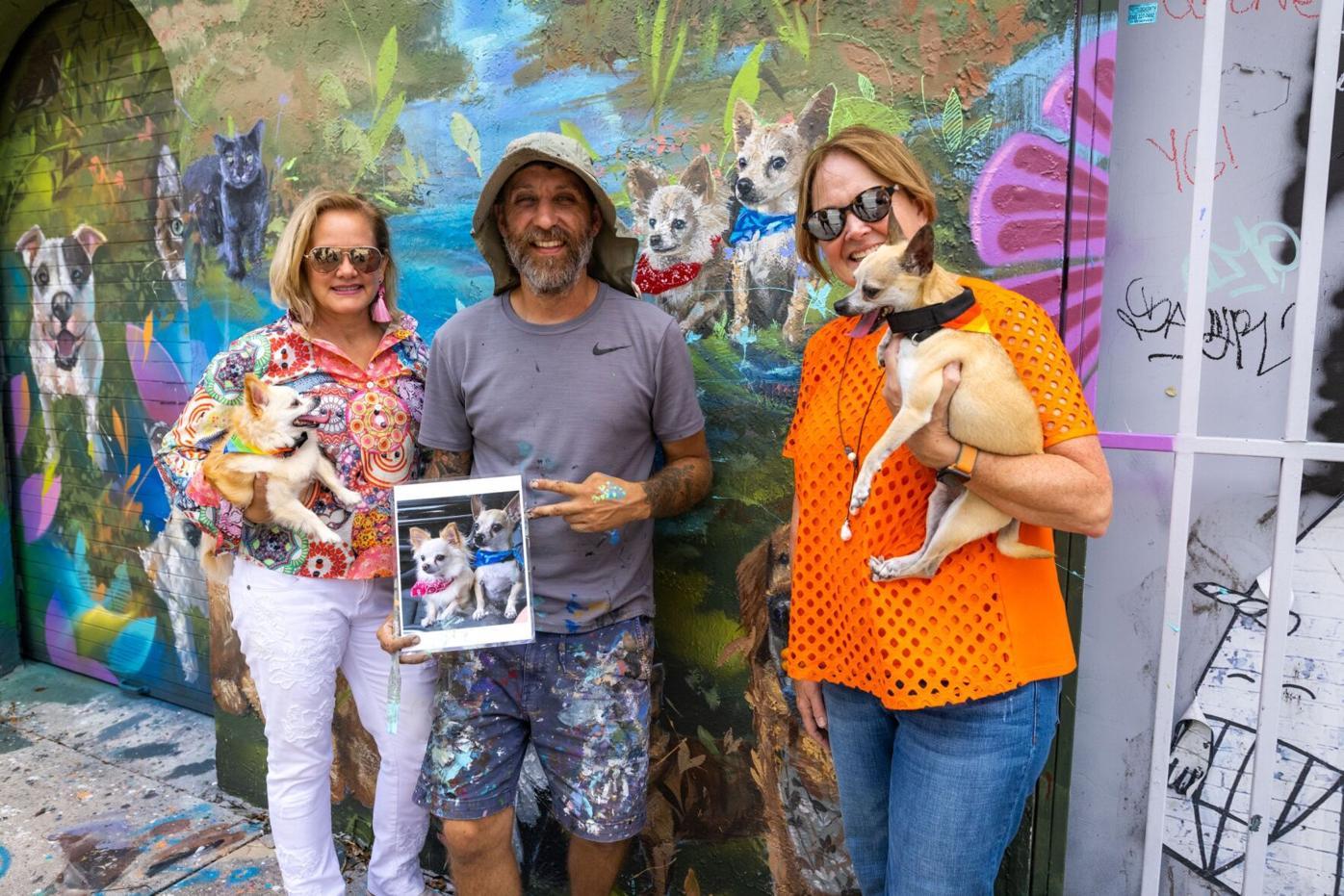 Chewy murals, Florida, artist