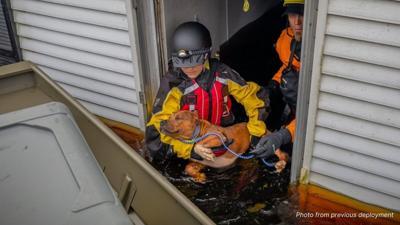 American Humane Hurricane Ida Rescue Team