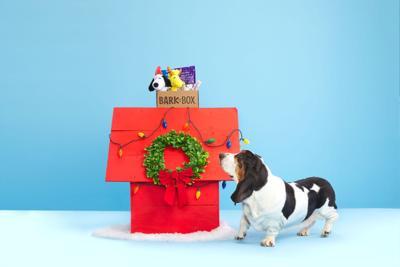 BarkBox holiday