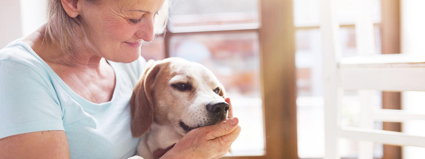Are You Recommending the Right Pet Chews and Treats to Your Customers?