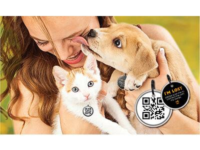 Spotted Pro! Smart Pet Tag