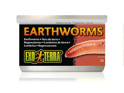 Exo Terra Superworm, Fly Larvae and Earthworms Canned Foods