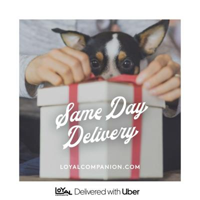 Independent Pet Partners, Uber