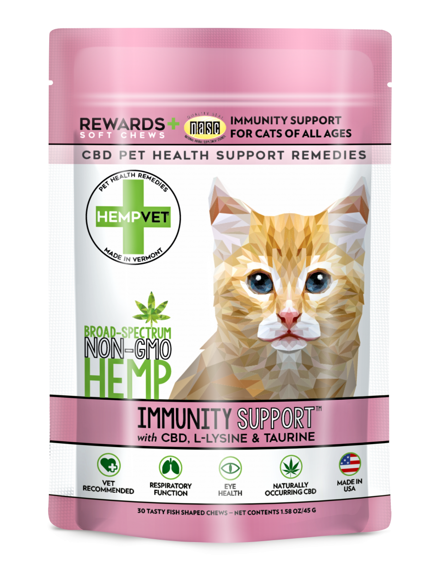 Product Spotlight: 5 Pet Wellness Products You Need to Know About