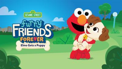 Sesame Workshop, Elmo gets a puppy