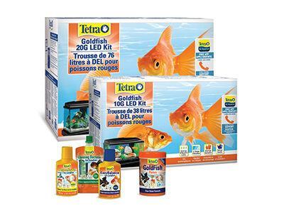 Tetra Goldfish Program