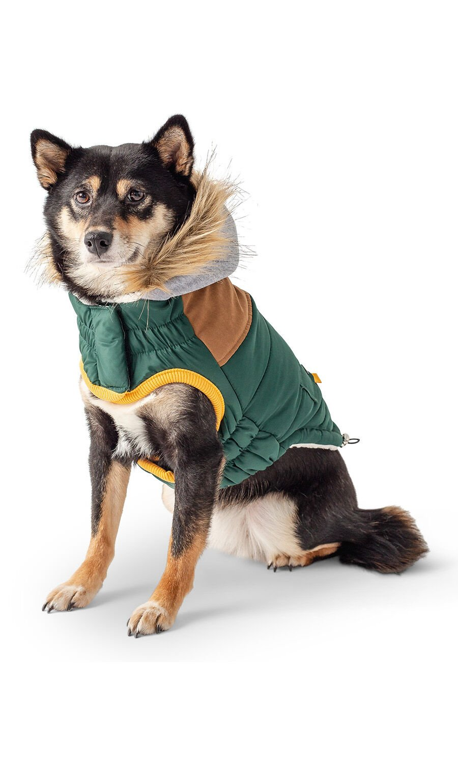 Comfortable, Stylish Dog Clothing Can Help Boost Apparel Sales