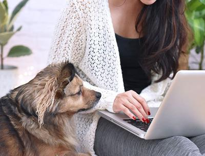 Enhance Your Pet Nutrition Knowledge With These 10 Resources