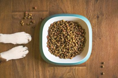 packaged facts pet food trends stock