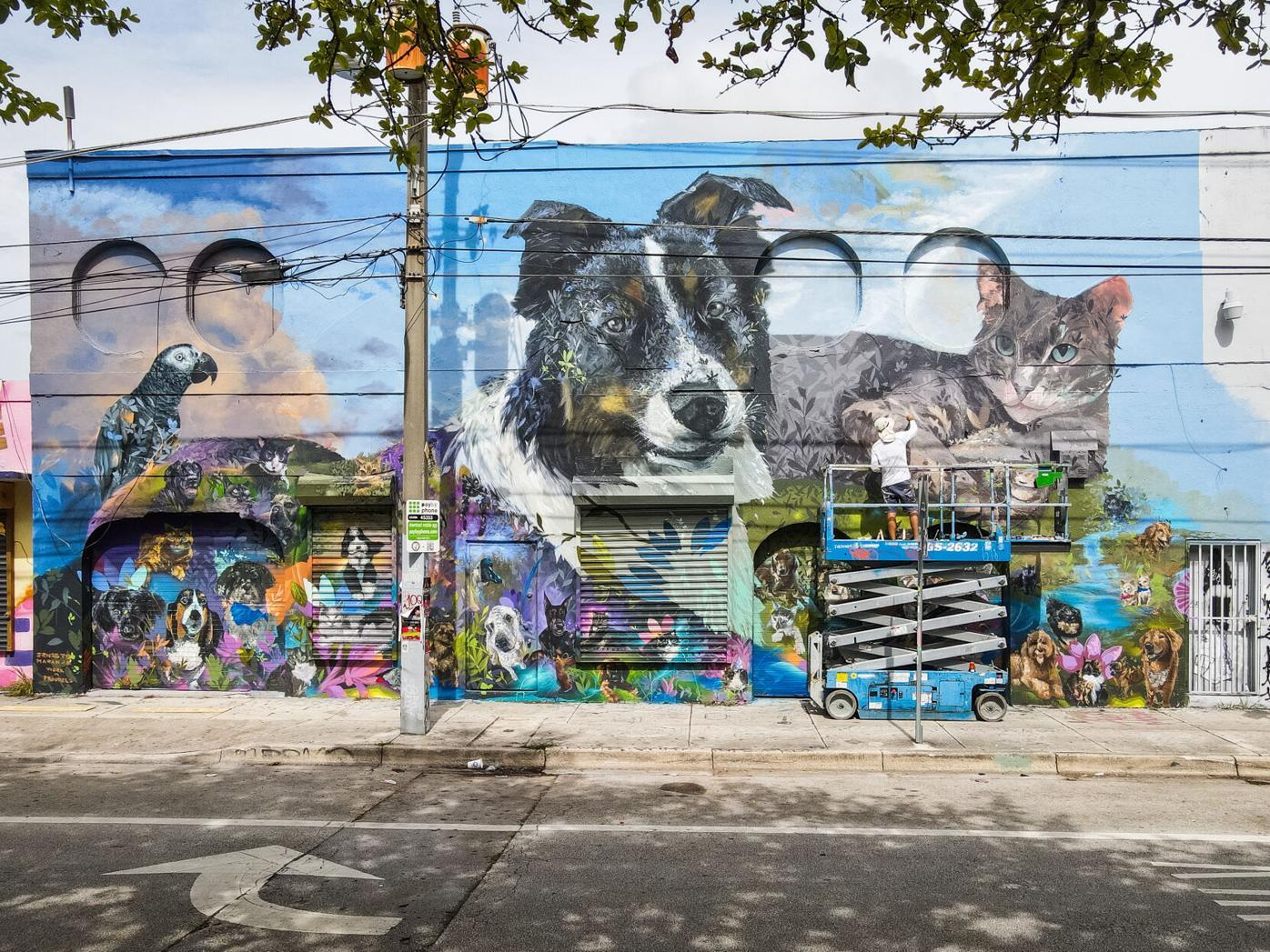Chewy murals, Florida