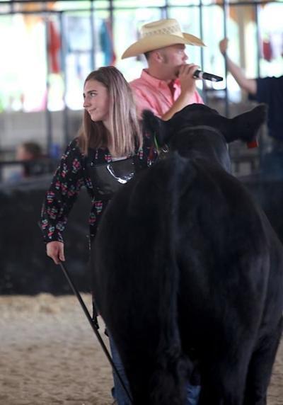 Phelps County Fair 2019