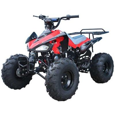 Image: City Safari: Nuisance issues ATV's and dirt bikes - is City Council impotent?
