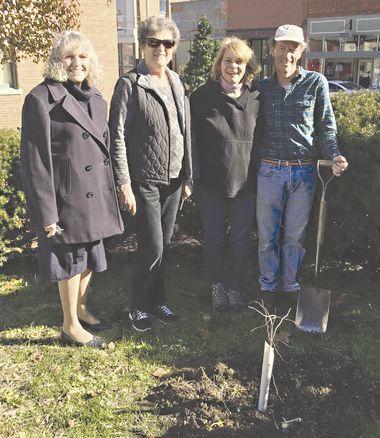 Clarksville tree donation