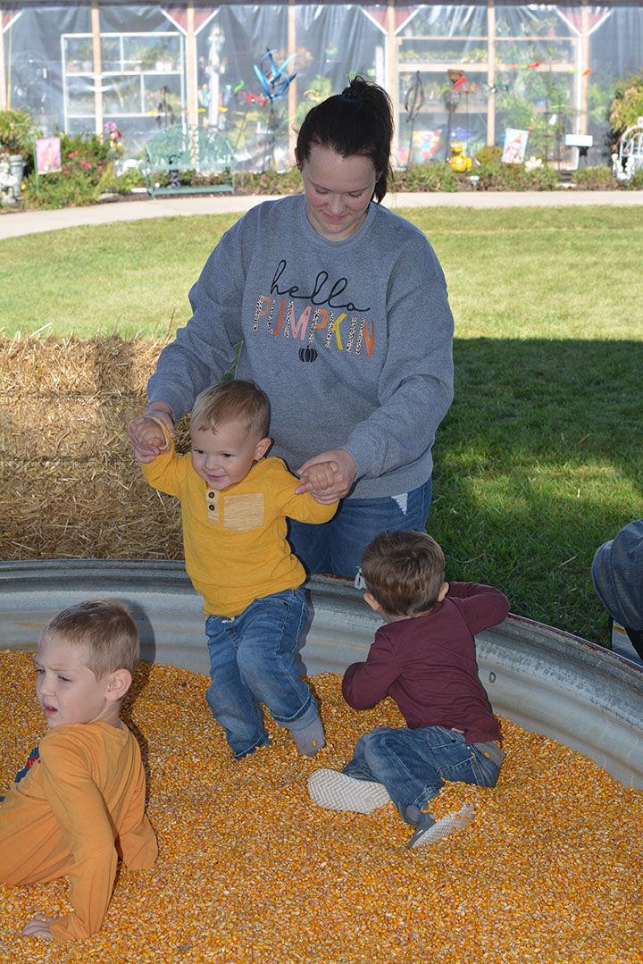 corn box.jpg