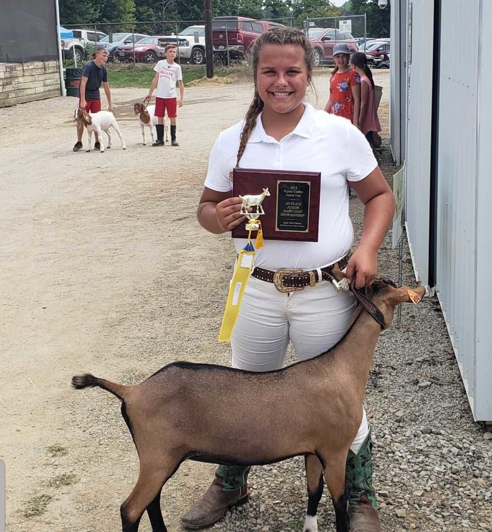 2nd Time Showing Goats