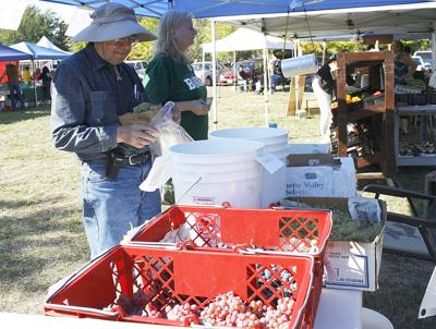Bounty market looks to relocate