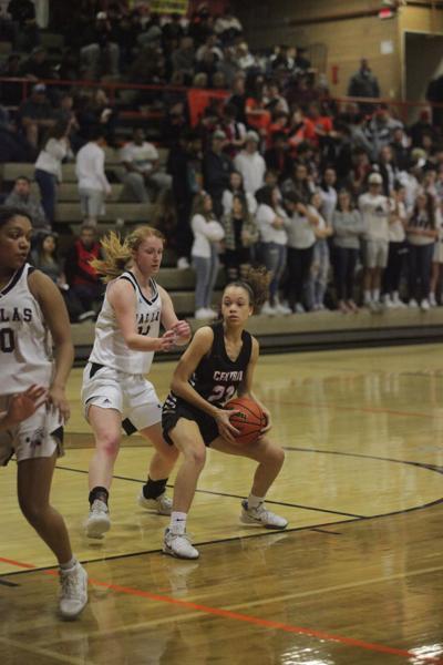 Panthers girls basketball.JPG