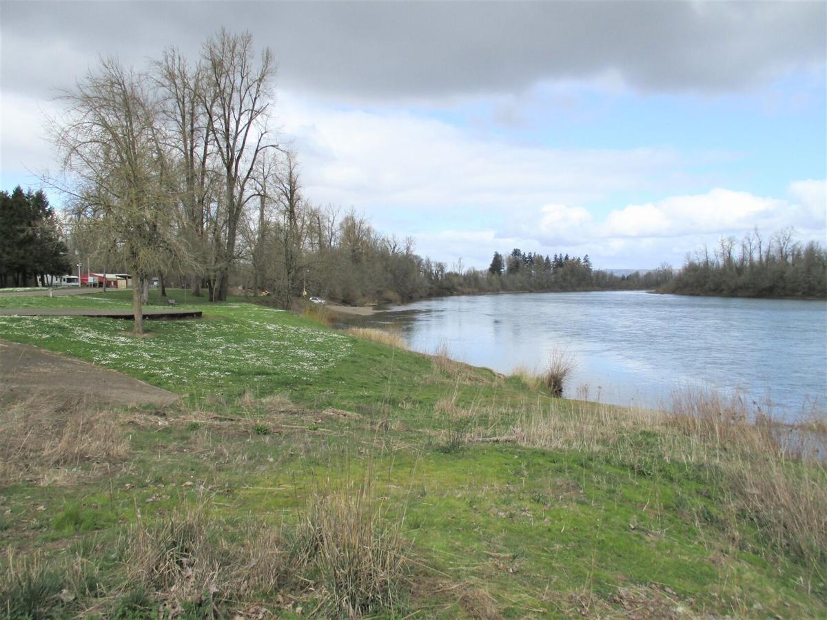 A12 River dangers Main.jpg