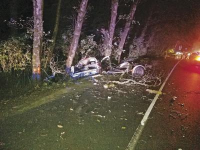 Dallas man dies in car crash on Hwy 101