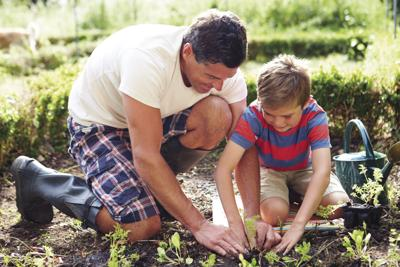 Marion-Polk Food Share to host garden workshops
