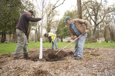 Social page Arbor Day 1.jpg