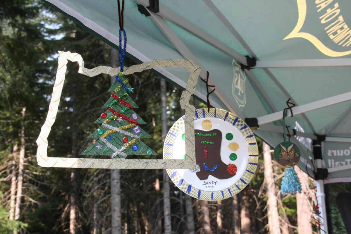 Jan. 19, 2021 And Christmas Tree And Sweet Home Oregon Sweet Home Ready To Celebrate U S Capital Christmas Tree News Polkio Com
