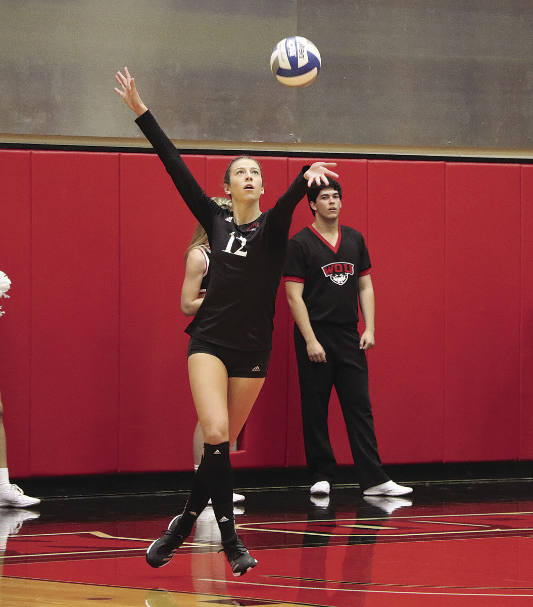 COLLEGE VOLLEYBALL: Wolves hungry for more