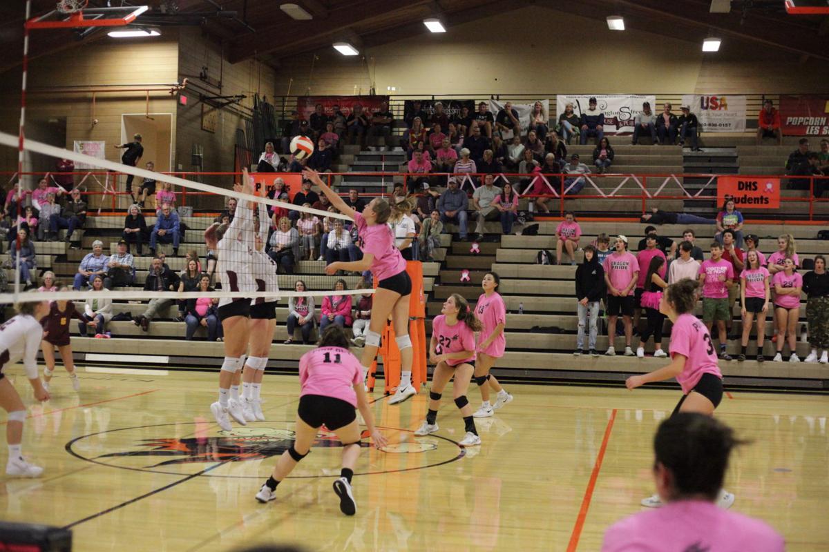 dallas volleyball2.JPG