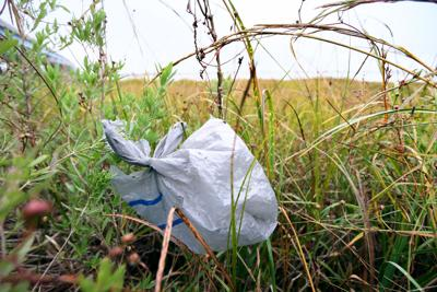 riverside plastic bag.jpg (copy) (copy)
